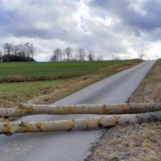 """Einsatz 11 - 13 / 2020 Unwetter  Sturm """"Sabine"""""""
