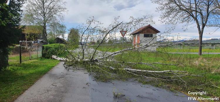 Einsatz 16 / 2021 Baum auf Fahrbahn Michelsdorf
